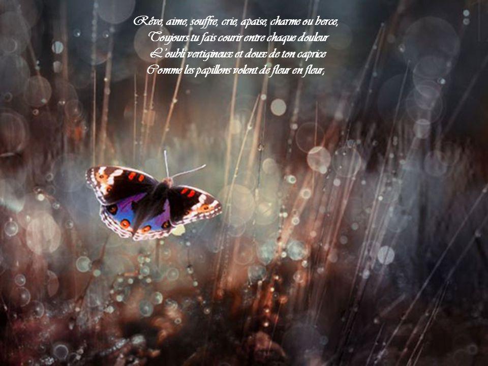 Chopin, mer de soupirs, de larmes, de sanglots Qu'un vol de papillons sans se poser traverse Jouant sur la tristesse ou dansant sur les flots.