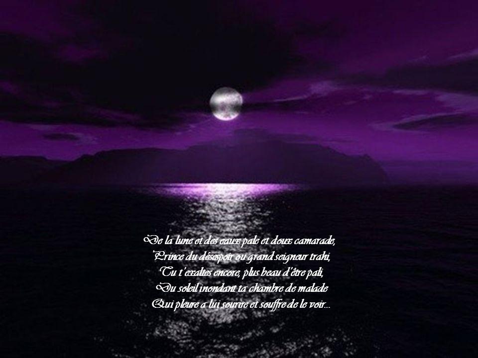 De ton chagrin alors ta joie est la complice: L'ardeur du tourbillon accroit la soif des pleurs.