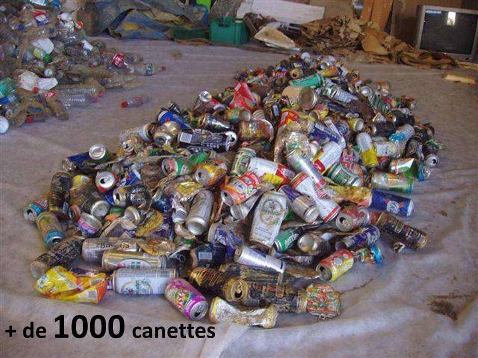 Bouteilles en plastiques vides + de 1000 paquets de cigarettes 50 paquets d'une même marque sur 500 mètres !!!.