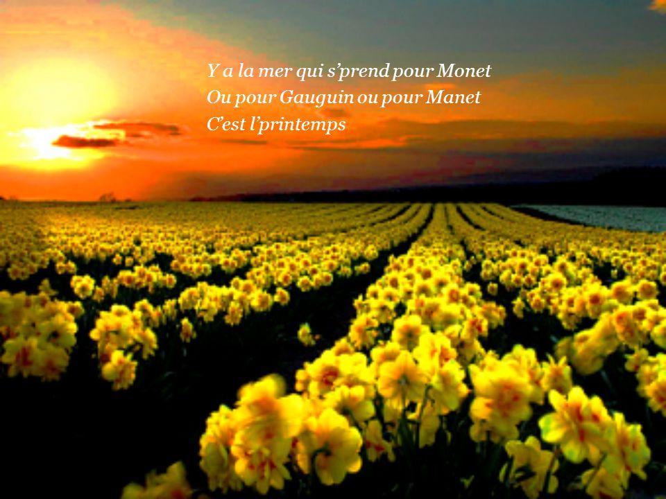Y a nos chagrins qu'ont des couleurs Y a meme du printemps chez l'malheur