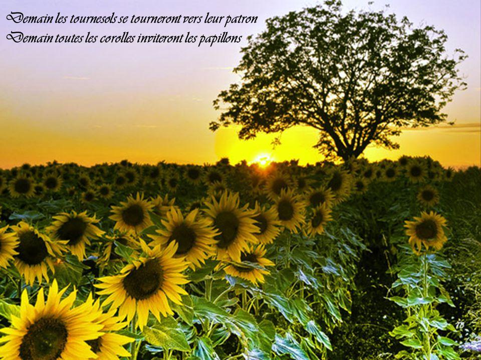 Demain il fera beau la météo nous l'a promis Demain il fera beau tous les espoirs nous sont permis