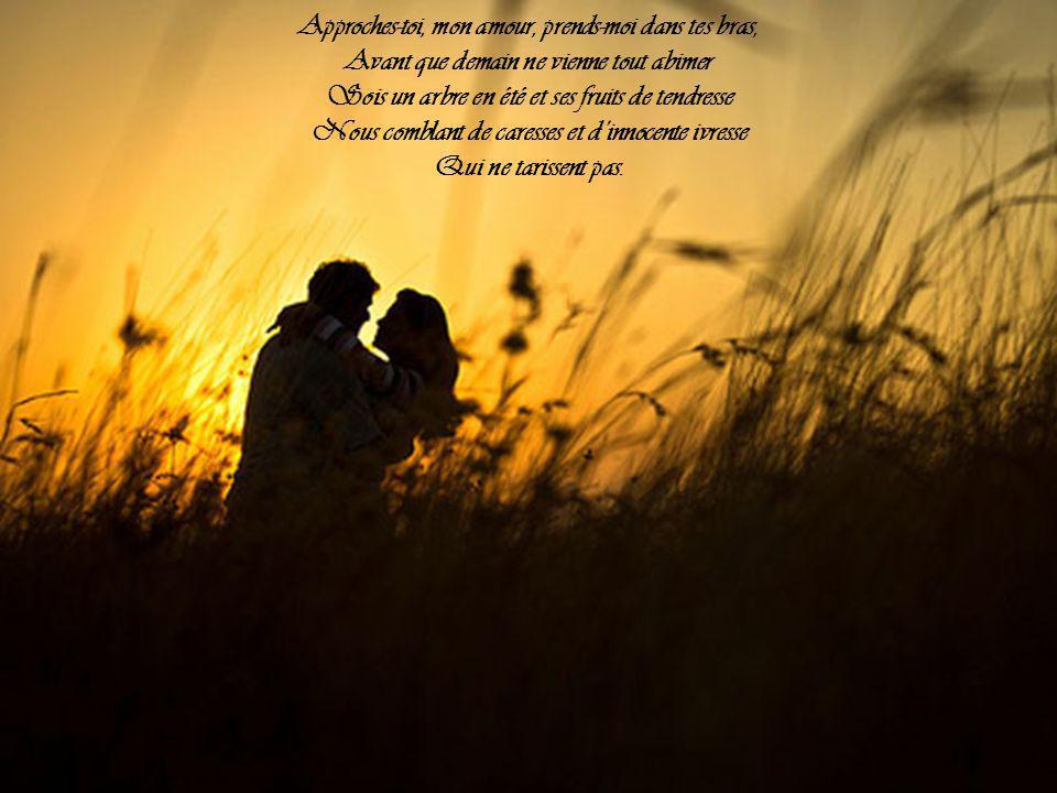 Demain il fera jour Il fera vie de tous les jours Il fera vertu, il fera sens unique et liberté perdue Tristes chansons d'amour Il fera inconsolable et cynique et par trop raisonnable