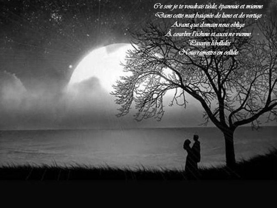 Approches-toi, mon amour, prends-moi dans tes bras, Avant que demain ne vienne tout abimer Sois un arbre en été et ses fruits de tendresse Nous comblant de caresses et d'innocente ivresse Qui ne tarissent pas.