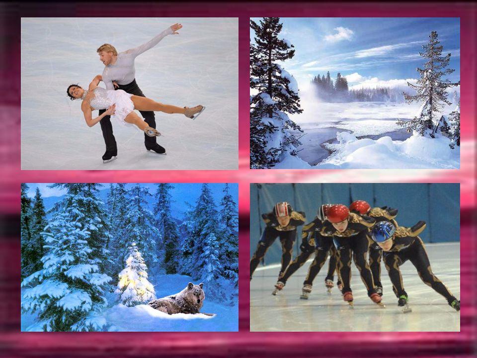 JANVIER La nouvelle année commence dans le froid avec le tourbillon des patineurs et les nuances bleutées de la neige