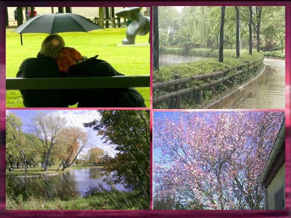 AVRIL La pluie a son mois, c'est Avril, la sève se libère faisant s'éveiller la nature
