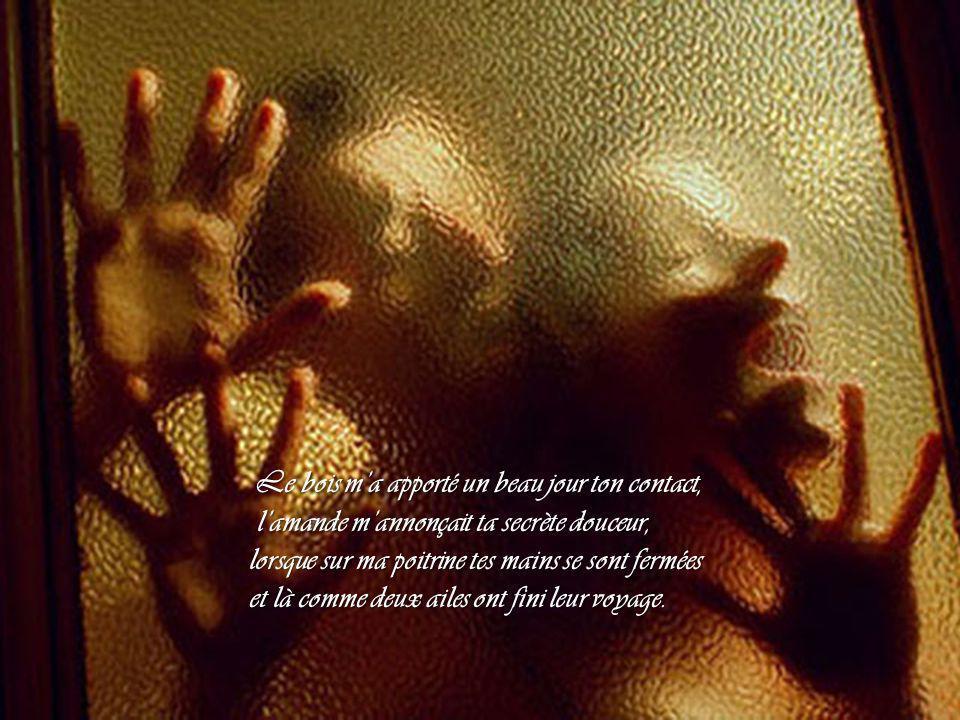 Le bois m'a apporté un beau jour ton contact, Le bois m'a apporté un beau jour ton contact, l'amande m'annonçait ta secrète douceur, l'amande m'annonçait ta secrète douceur, lorsque sur ma poitrine tes mains se sont fermées et là comme deux ailes ont fini leur voyage.