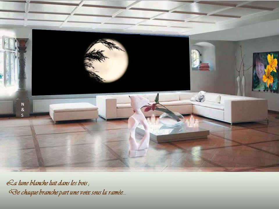 Paul Verlaine La lune blanche Par Nanou et Stan N&SN&S