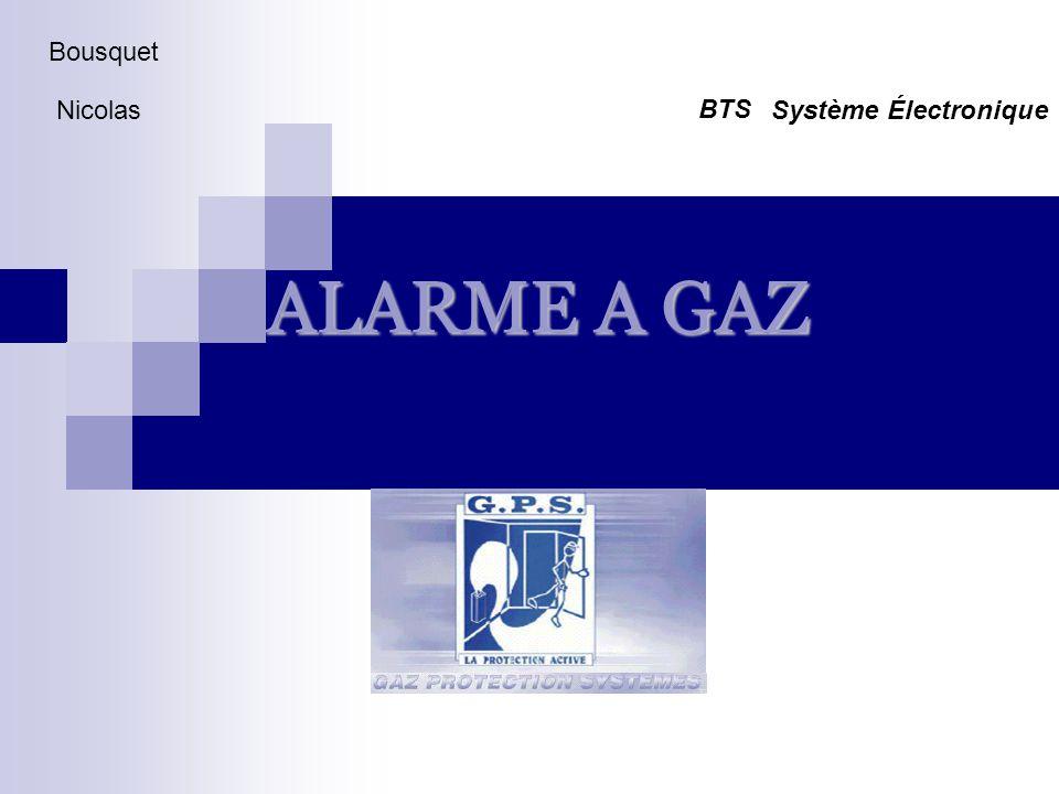 ALARME A GAZ Bousquet NicolasSystème Électronique BTS