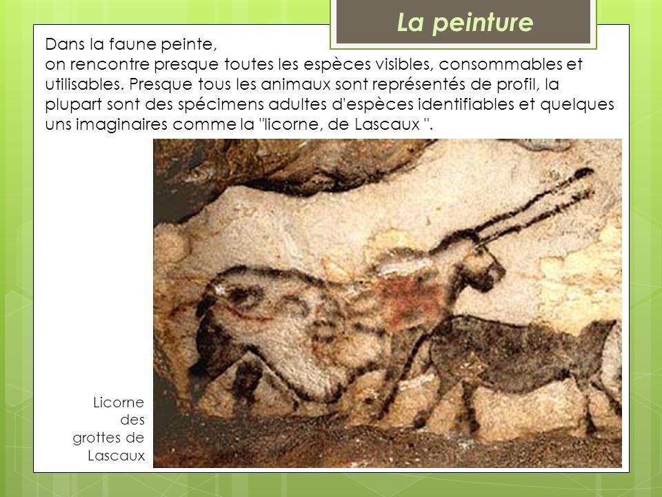 Licorne des grottes de Lascaux Dans la faune peinte, on rencontre presque toutes les espèces visibles, consommables et utilisables. Presque tous les a
