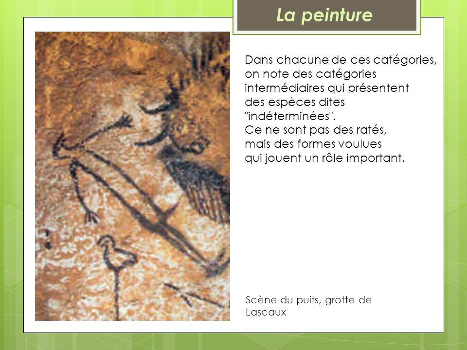 Scène du puits, grotte de Lascaux Dans chacune de ces catégories, on note des catégories intermédiaires qui présentent des espèces dites