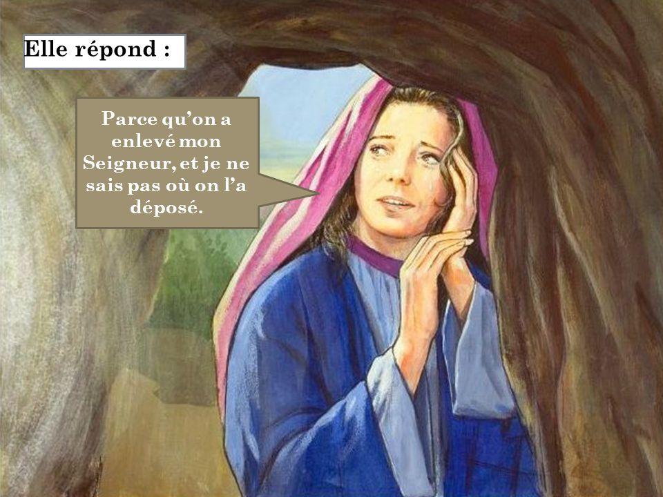 Elle répond : Parce qu'on a enlevé mon Seigneur, et je ne sais pas où on l'a déposé.