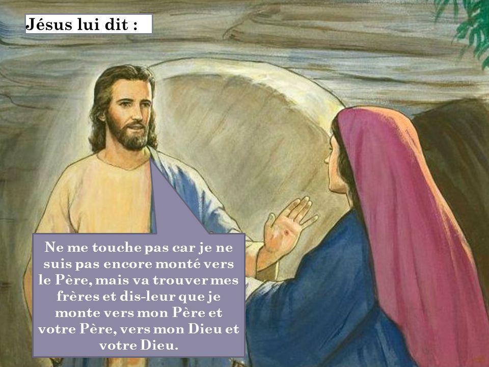 Ne me touche pas car je ne suis pas encore monté vers le Père, mais va trouver mes frères et dis-leur que je monte vers mon Père et votre Père, vers m