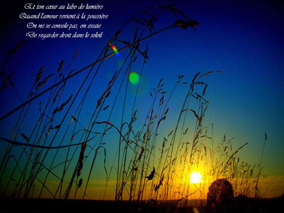 Et ton cœur au labo de lumière Quand l amour revient à la poussière On ne se console pas, on essaie De regarder droit dans le soleil