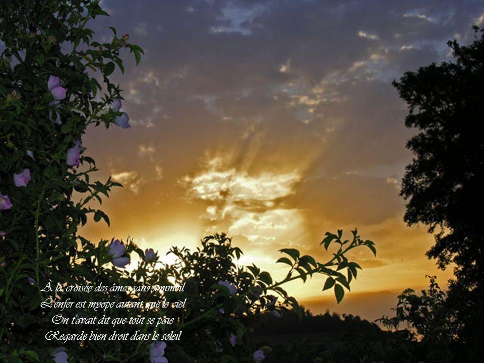Et ton cœur au labo de lumière Quand l'amour revient à la poussière On ne se console pas, on essaie De regarder droit dans le soleil