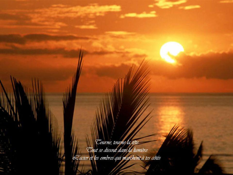 À la croisée des âmes sans sommeil L'enfer est myope autant que le ciel On t'avait dit que tout se paie Regarde bien droit dans le soleil