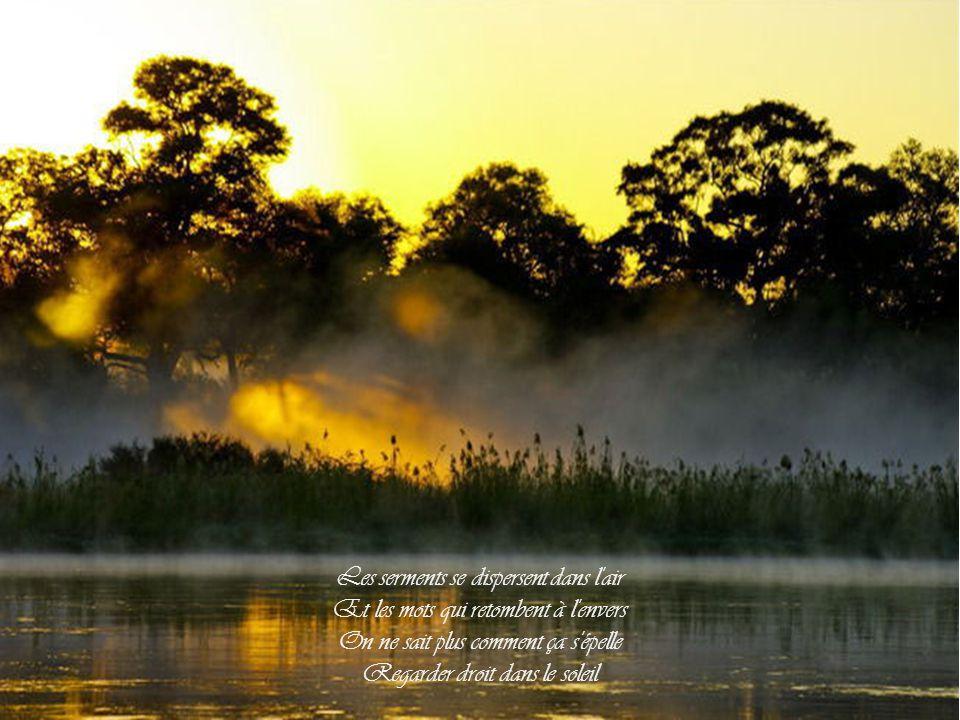 Les serments se dispersent dans l air Et les mots qui retombent à l envers On ne sait plus comment ça s épelle Regarder droit dans le soleil