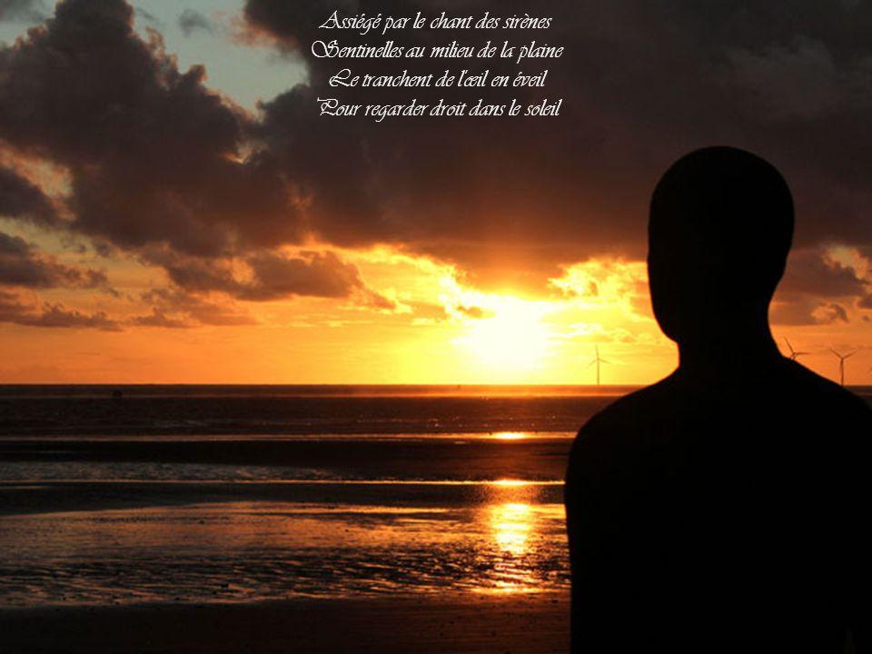 Assiégé par le chant des sirènes Sentinelles au milieu de la plaine Le tranchent de l œil en éveil Pour regarder droit dans le soleil