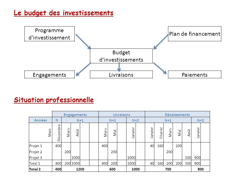 Le budget des investissements Situation professionnelle Programme d'investissement Plan de financement Budget d'investissements Engagements Livraisons