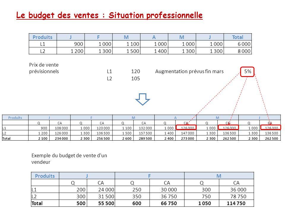Le budget des ventes : Situation professionnelle ProduitsJFMAMJTotal L1 900 1 000 1 100 1 000 6 000 L2 1 200 1 300 1 500 1 400 1 300 8 000 Prix de ven