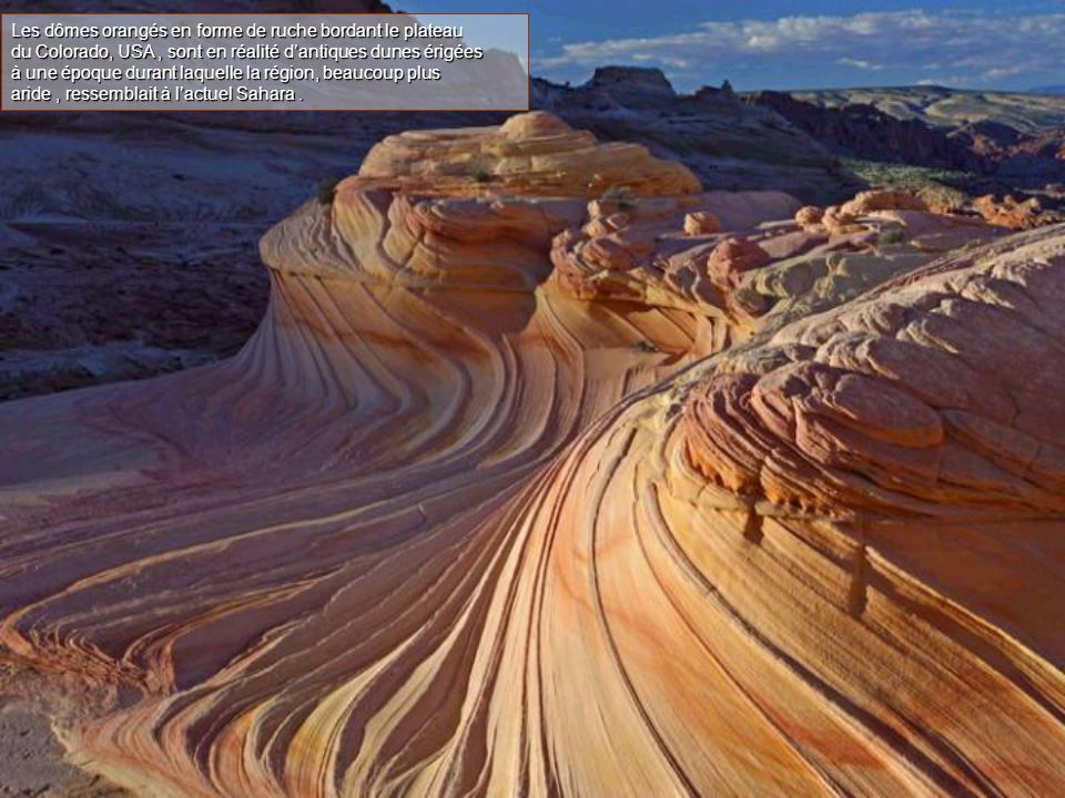 Les dômes orangés en forme de ruche bordant le plateau du Colorado, USA, sont en réalité d'antiques dunes érigées à une époque durant laquelle la région, beaucoup plus aride, ressemblait à l'actuel Sahara.