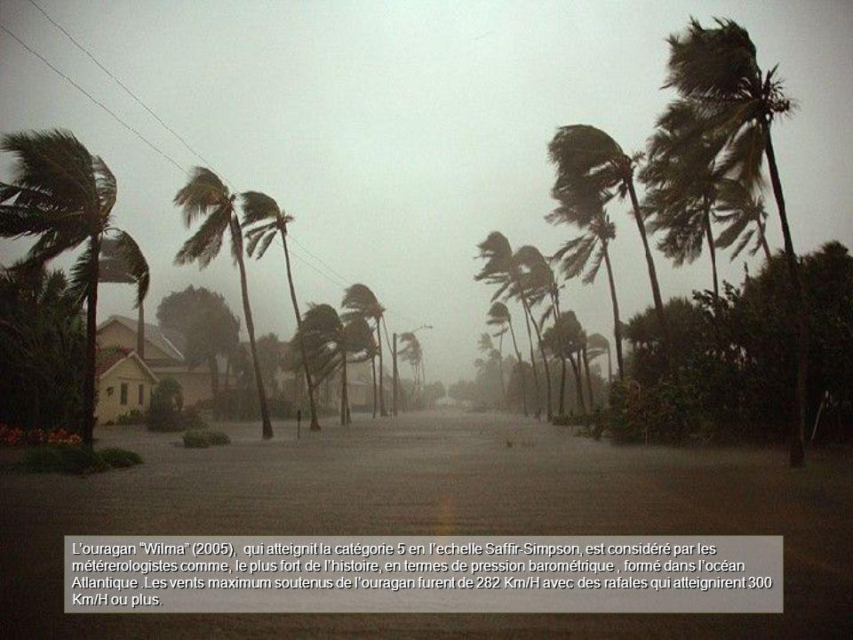 L'ouragan Wilma (2005), qui atteignit la catégorie 5 en l'echelle Saffir-Simpson, est considéré par les métérerologistes comme, le plus fort de l'histoire, en termes de pression barométrique, formé dans l'océan Atlantique.Les vents maximum soutenus de l'ouragan furent de 282 Km/H avec des rafales qui atteignirent 300 Km/H ou plus.