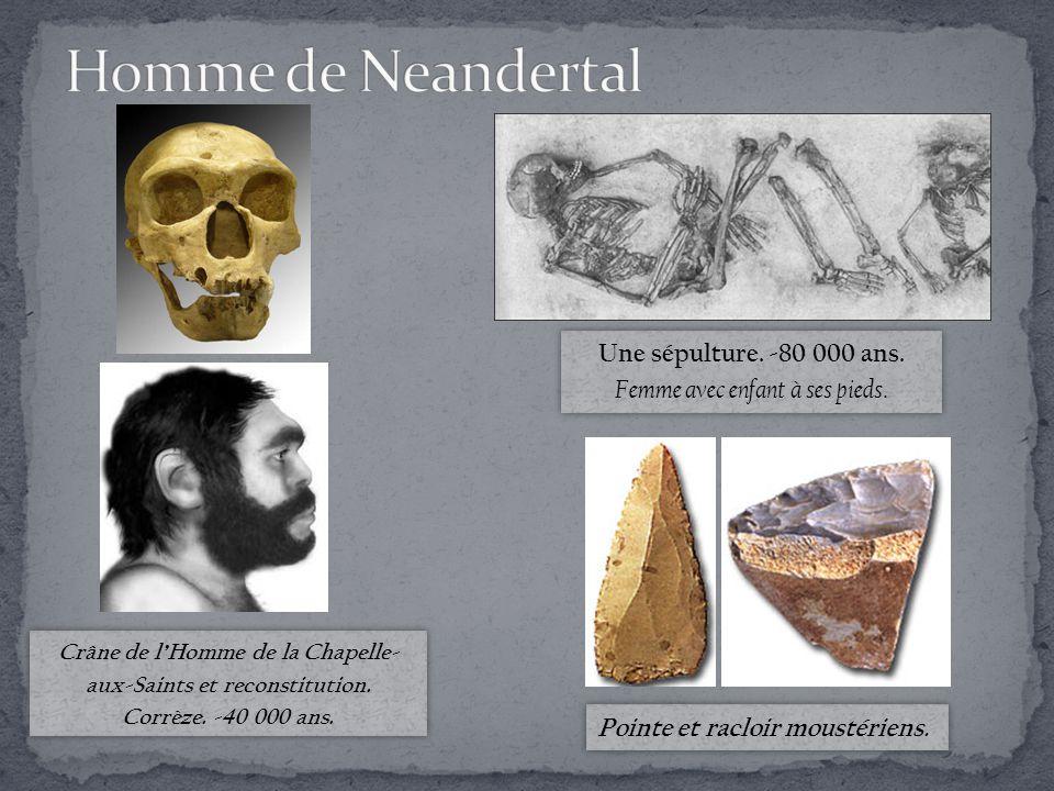Crâne de l'Homme de la Chapelle- aux-Saints et reconstitution.