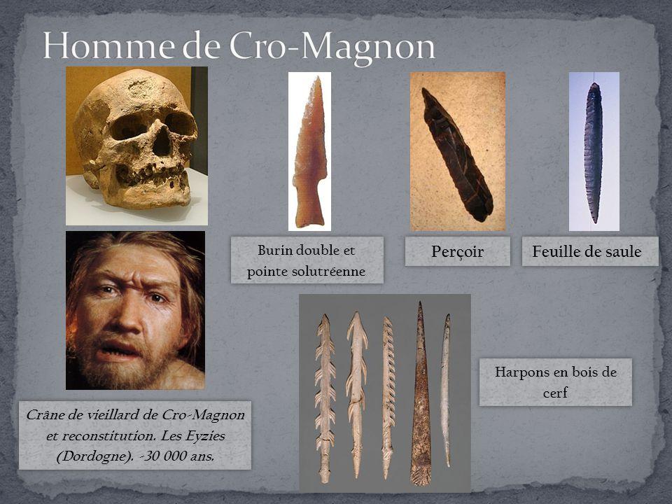 Crâne de vieillard de Cro-Magnon et reconstitution.