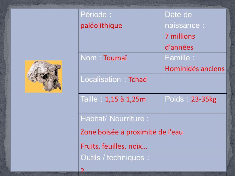 Période : paléolithique Date de naissance : 7 millions d'années Nom : Toumaï Famille : Hominidés anciens Localisation : Tchad Taille : 1,15 à 1,25m Po
