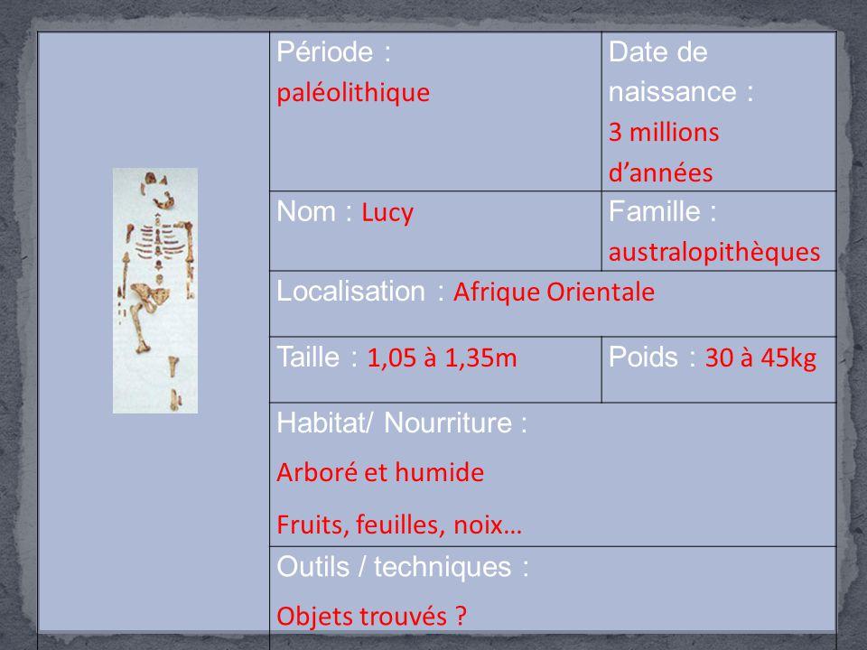 Période : paléolithique Date de naissance : 3 millions d'années Nom : Lucy Famille : australopithèques Localisation : Afrique Orientale Taille : 1,05