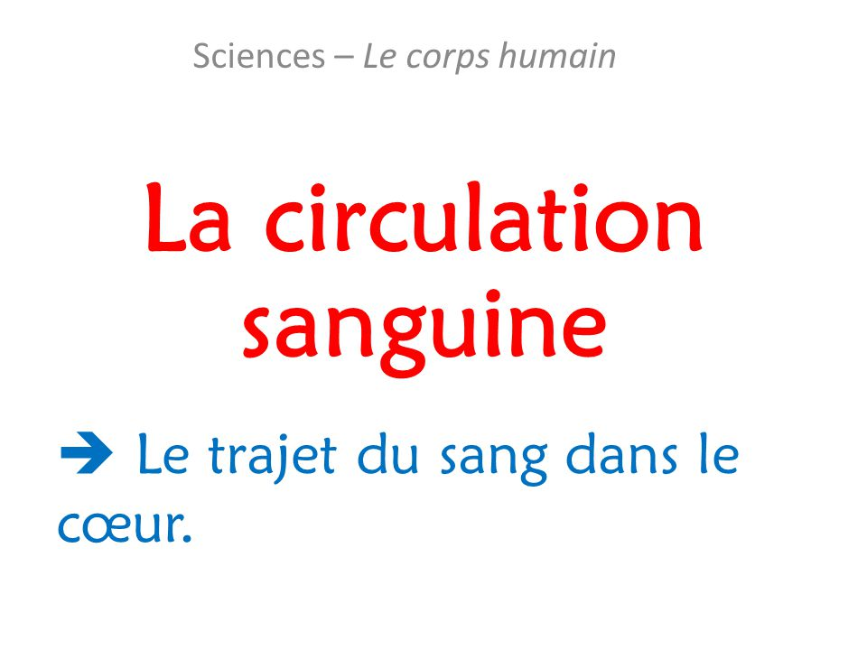 La circulation sanguine Sciences – Le corps humain  Le trajet du sang dans le cœur.