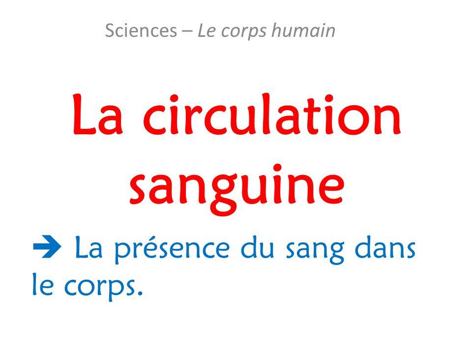 La circulation sanguine Sciences – Le corps humain  La présence du sang dans le corps.