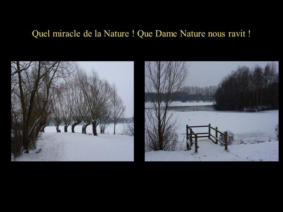 Quel miracle de la Nature ! Que Dame Nature nous ravit !