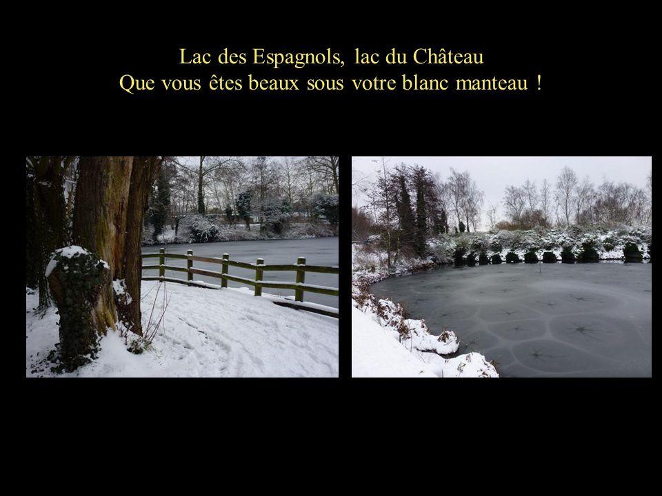 Lac des Espagnols, lac du Château Que vous êtes beaux sous votre blanc manteau !