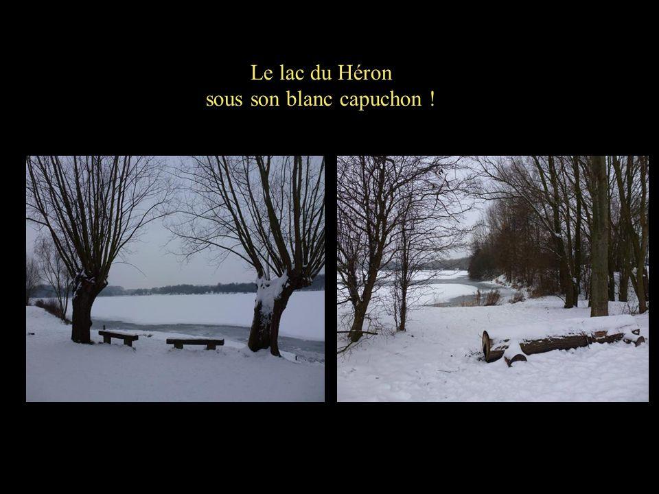 Le lac du Héron sous son blanc capuchon !