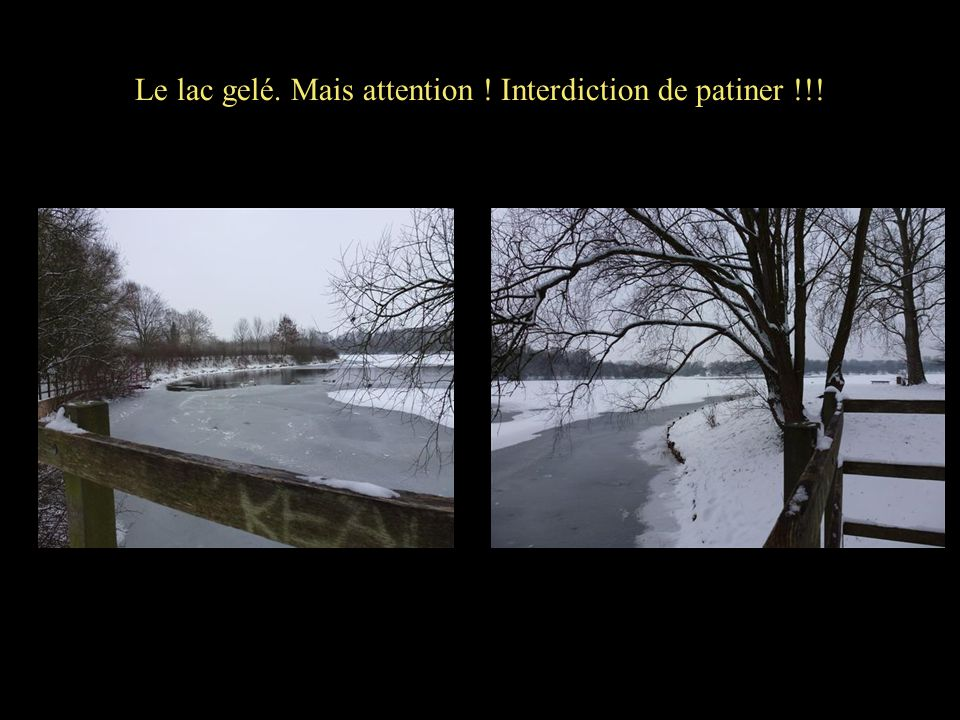 Le lac gelé. Mais attention ! Interdiction de patiner !!!