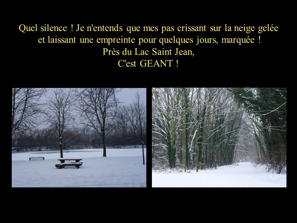 Quel silence ! Je n'entends que mes pas crissant sur la neige gelée et laissant une empreinte pour quelques jours, marquée ! Près du Lac Saint Jean, C
