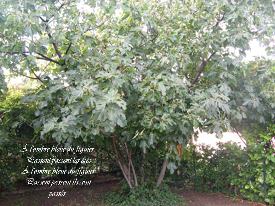 On dira qui était-il Me jetant des roses-thé Moi je dormirai tranquille Heureux d'avoir pu chanter
