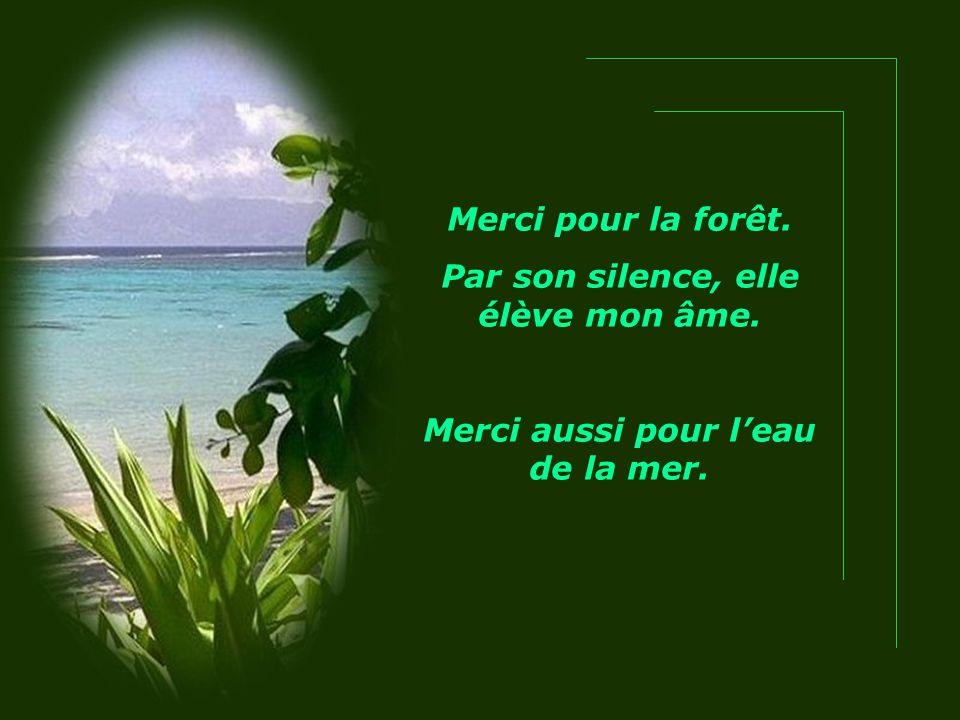 Merci pour la forêt. Par son silence, elle élève mon âme. Merci aussi pour l'eau de la mer.