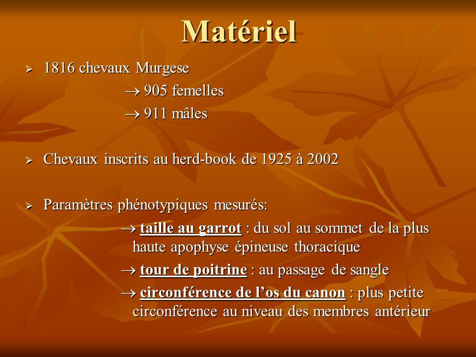 Matériel  1816 chevaux Murgese  905 femelles  905 femelles  911 mâles  911 mâles  Chevaux inscrits au herd-book de 1925 à 2002  Paramètres phén