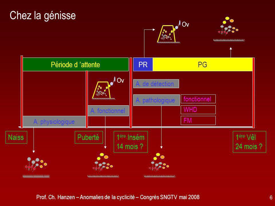 Prof. Ch. Hanzen – Anomalies de la cyclicité – Congrès SNGTV mai 2008 6 Chez la génisse fonctionnel A. pathologique A. de détection A. fonctionnel A.