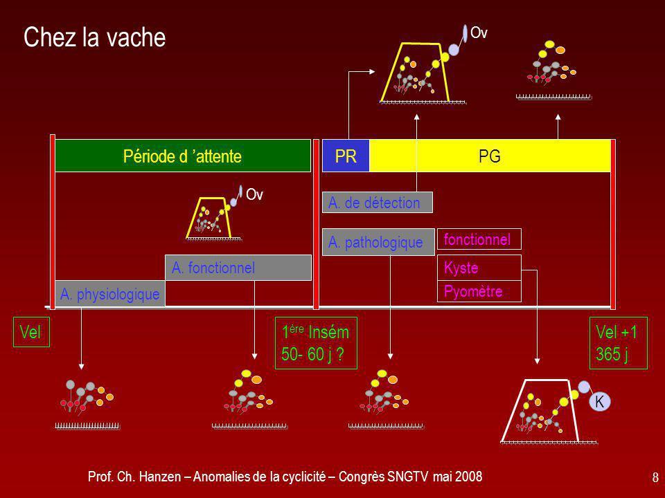 Prof. Ch. Hanzen – Anomalies de la cyclicité – Congrès SNGTV mai 2008 8 Chez la vache fonctionnel A. pathologique A. fonctionnel A. physiologique Péri
