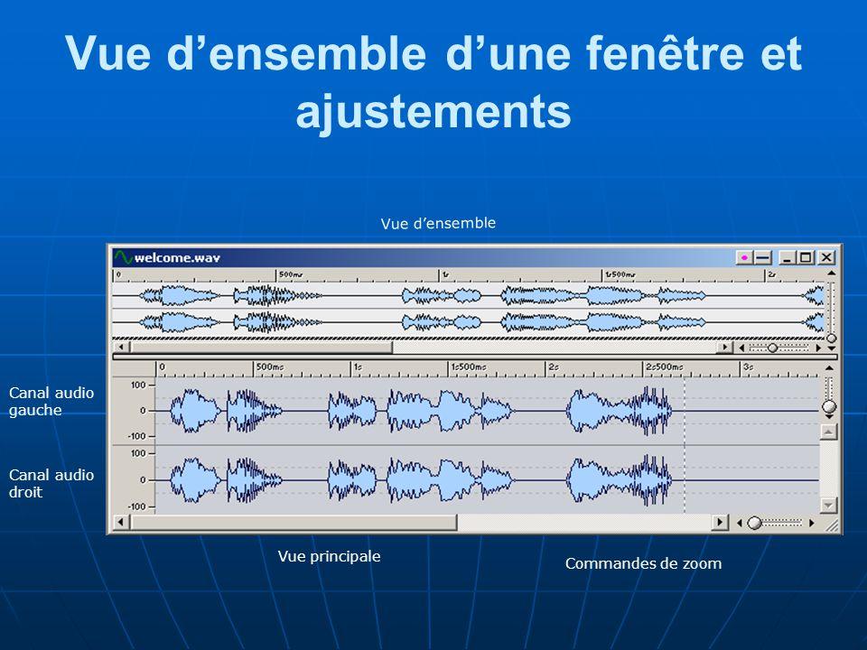 Vue d'ensemble d'une fenêtre et ajustements Commandes de zoom Vue principale Vue d'ensemble Canal audio gauche Canal audio droit