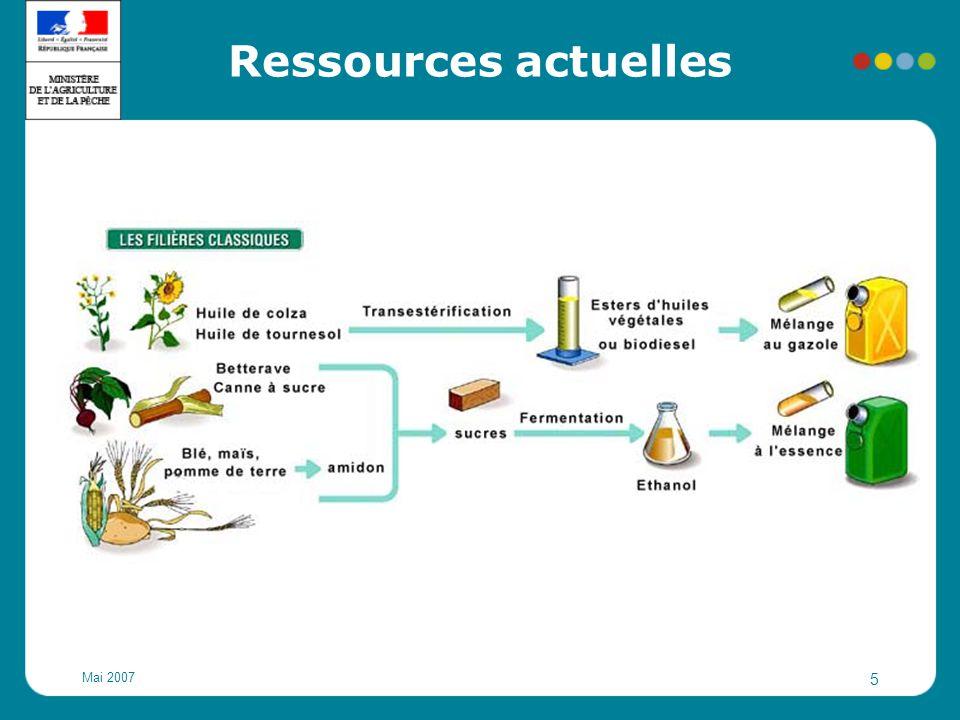 Mai 2007 6 Autres ressources Biodiesel: graisses animales (abattoirs et équarrissage) et huiles usagées Éthanol: distillation de marcs de raisin et distillation de crise (vin) A l'avenir: cellulose (plantes entières, bois)