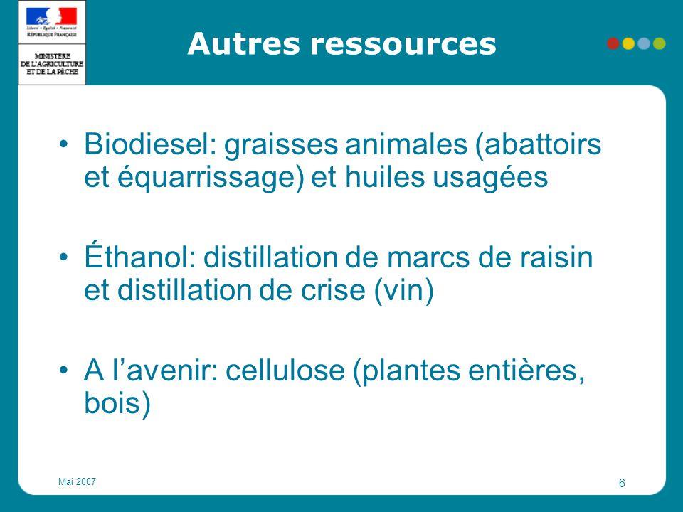 Mai 2007 6 Autres ressources Biodiesel: graisses animales (abattoirs et équarrissage) et huiles usagées Éthanol: distillation de marcs de raisin et di
