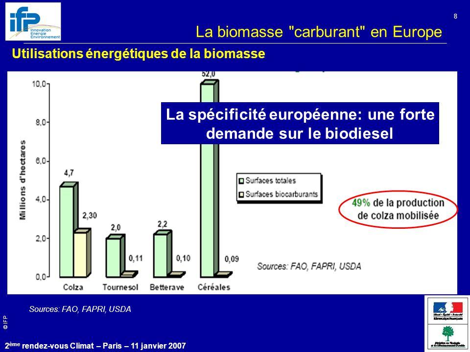 © IFP 2 ème rendez-vous Climat – Paris – 11 janvier 2007 8 La biomasse carburant en Europe Utilisations énergétiques de la biomasse Sources: FAO, FAPRI, USDA La spécificité européenne: une forte demande sur le biodiesel