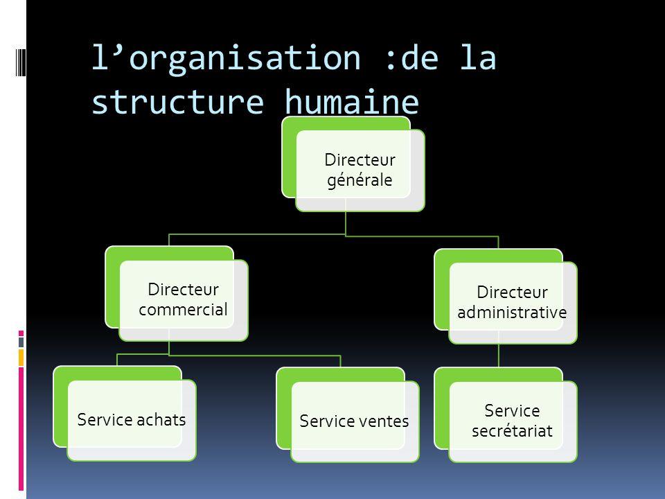 l'organisation :de la structure humaine Directeur générale Directeur commercial Service achatsService ventes Directeur administrative Service secrétariat