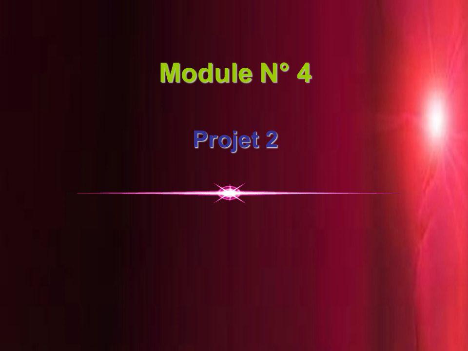 20 Module N° 4 Projet 2