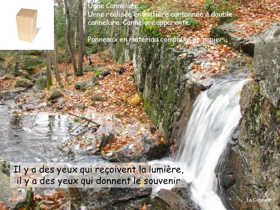 Préservez cet environnement Plaque d'identité cœur de bois