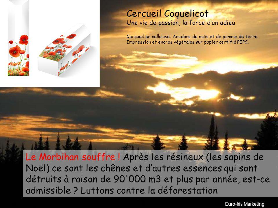 LE CERCUEIL ECOLOGIQUE EC «Made in France» Lac de Bret Cliquez sur Diaporama et visionner Pour avancer… Cliquez