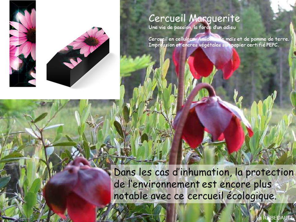 Dans les cas d'inhumation, la protection de l'environnement est encore plus notable avec ce cercueil écologique.